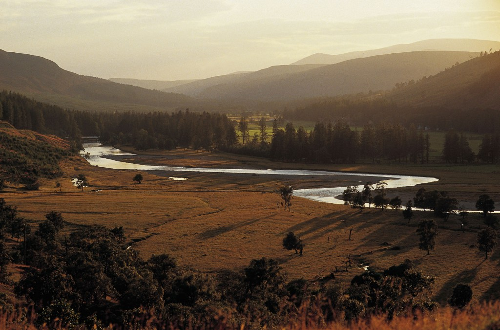LOOKING OVER TO THE RIVER DEE (RISING IN THE CAIRNGORMS TO RUN EAST SOME 90 MILES THROUGH BRAEMAR, BALMORAL, BALLATER, BANCHORY TO ABERDEEN) NEAR MAR LODGE, ABERDEENSHIRE. PIC: P.TOMKINS/VisitScotland/SCOTTISH VIEWPOINT Tel: +44 (0) 131 622 7174 Fax: +44 (0) 131 622 7175 E-Mail : info@scottishviewpoint.com This photograph can not be used without prior permission from Scottish Viewpoint.